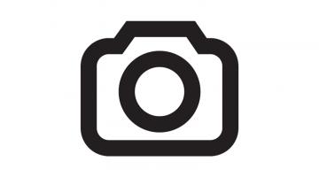 https://axynoohcto.cloudimg.io/crop/360x200/n/https://objectstore.true.nl/webstores:muntstad-nl/07/scala-avatar.png?v=1-0